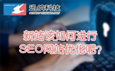 新站该如何进行SEO网站优化